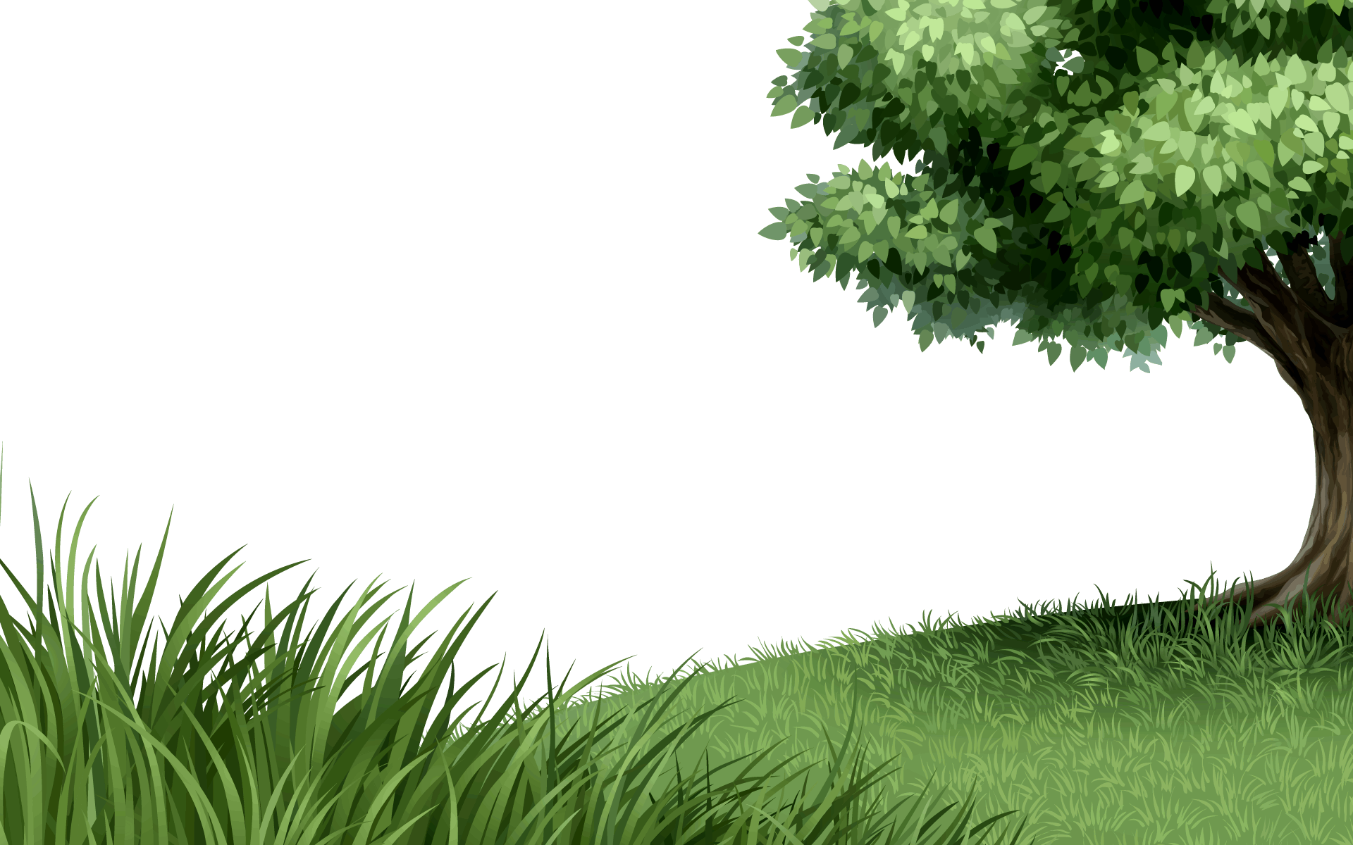 Png Background Hd